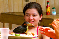 girl with toucan at tayrona national park santa marta colombia