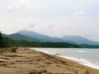 Miles of Secluded Beach for Surfing Costeño Beach Santa Marta Colombia